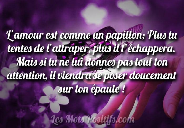 Citations Sur La Confiance En Amour
