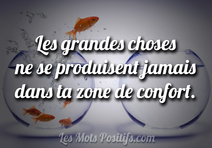 La Zone De Confort Citations Et Pensees Positives Les Mots