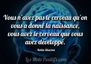 Vous avez le cerveau que vous avez développé