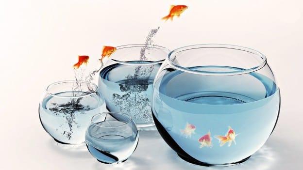 339 affirmations positives qui changeront la qualité de votre vie