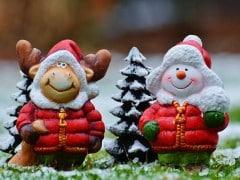 christmas-moose-1061521_960_720