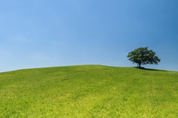 3 pratiques d'autosuggestion pour atteindre de vos objectifs