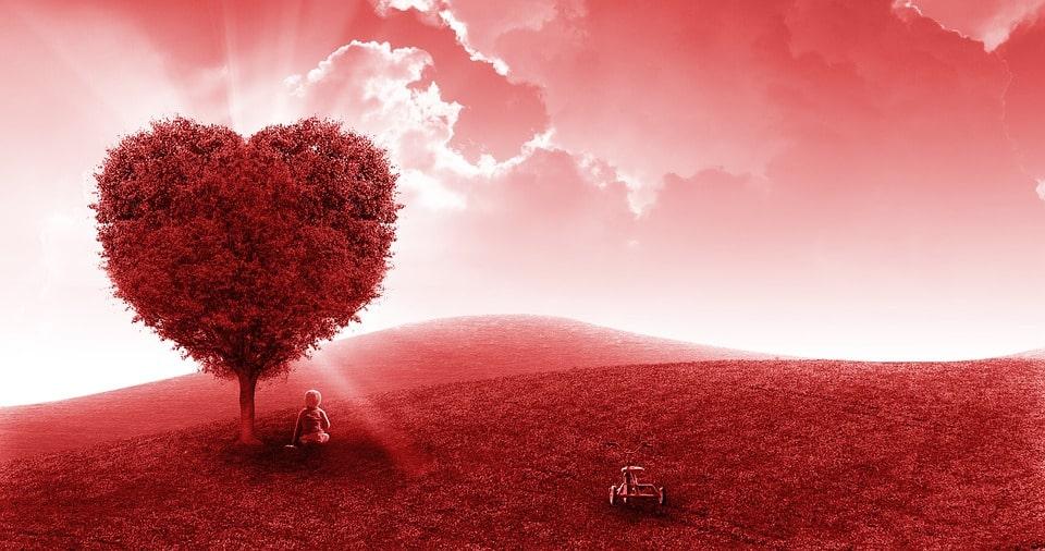 Citation 4 messages du coeur que l'on ne devrait pas ignorer