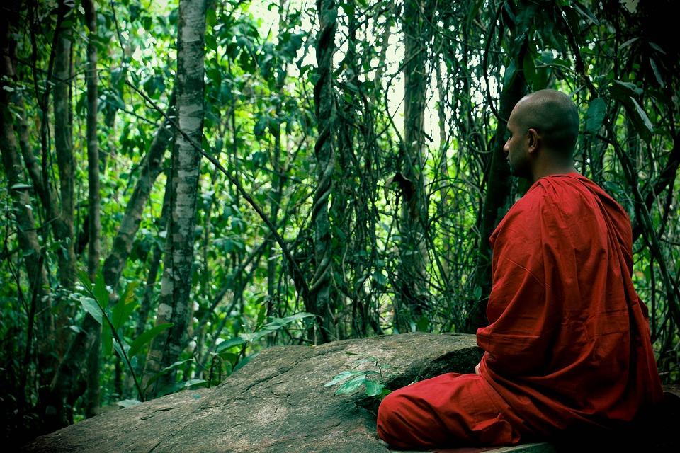 Citation Vivre le moment présent grâce à la pleine conscience