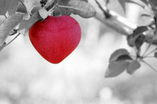Choisir l'amour