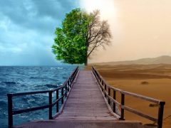 5303_photo_manipulation_hd_wallpapers_water_desert_tree