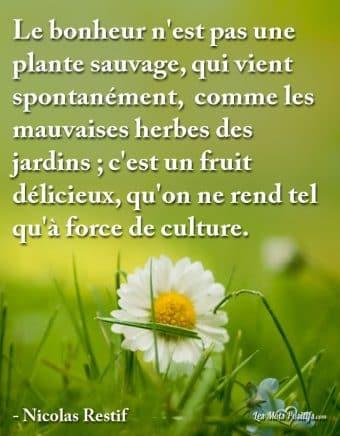 Le bonheur n'est pas une plante sauvage