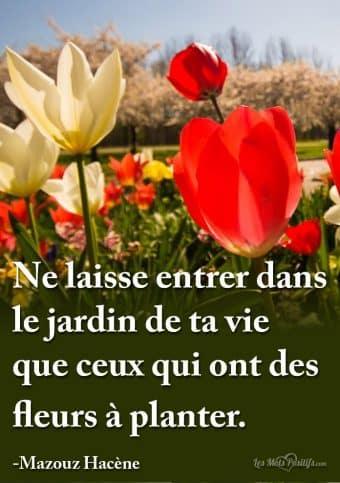 Qu est ce qu une attitude positive citation positive et proverbe positif - Que planter dans son jardin ...