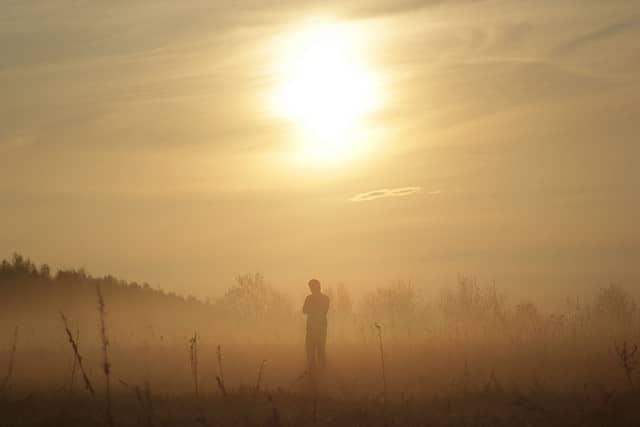 Citation Mon beau brouillard