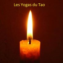 Formation Williams CADENET Les Yogas du Tao
