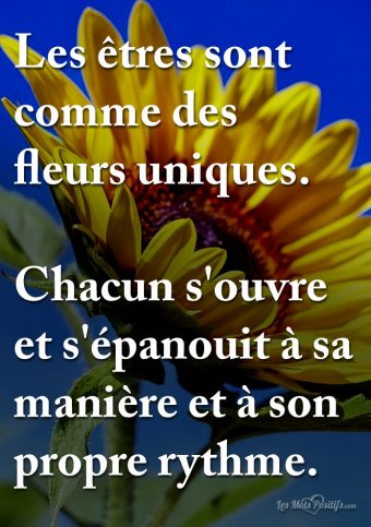 Les êtres sont comme des fleurs uniques