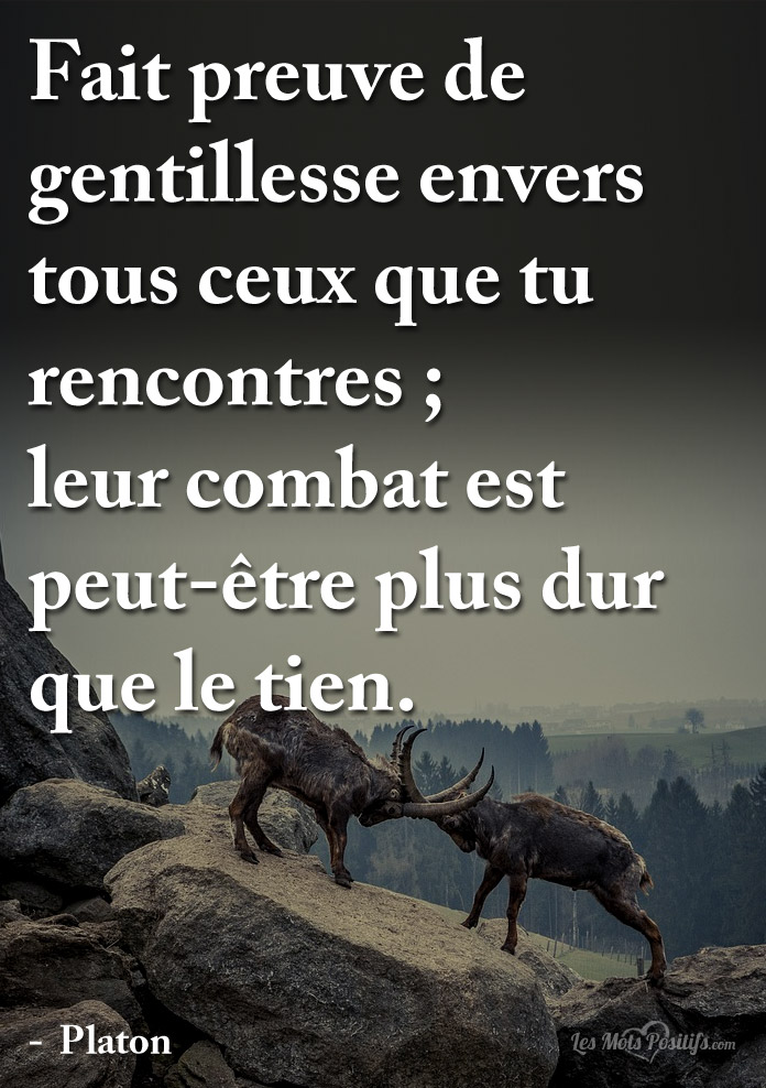 citation gentillesse