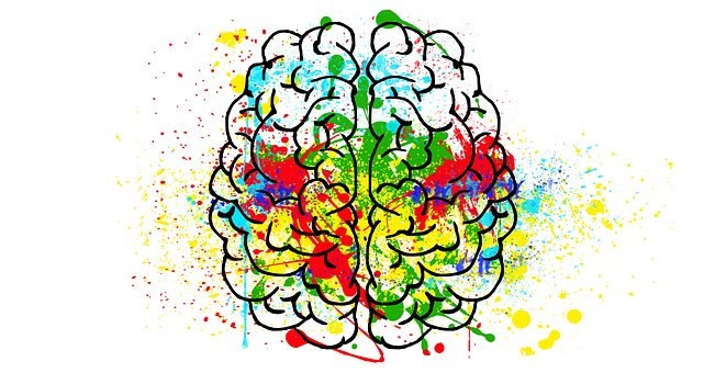 brain-2062048__340