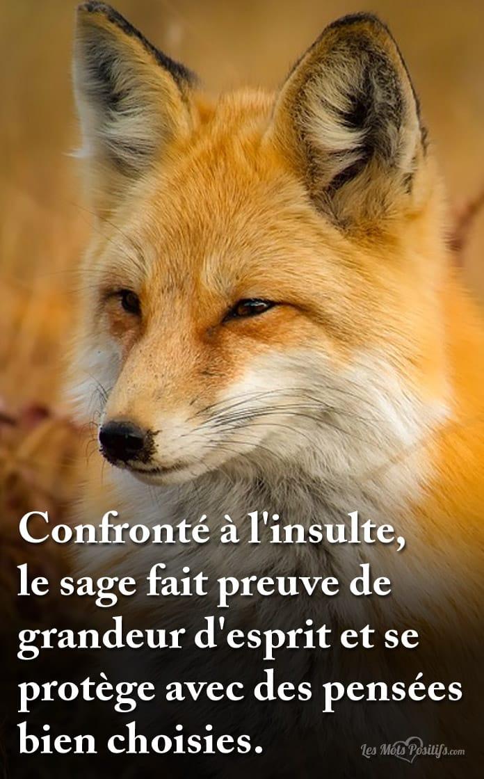 sage_insulte