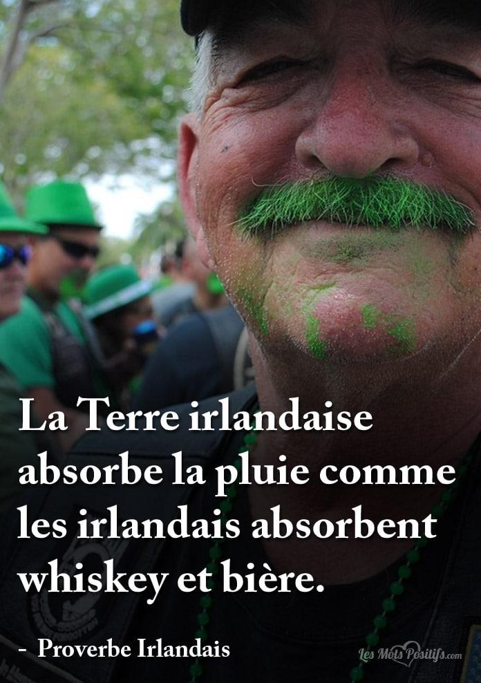 Citation Bonne Saint-Patrick
