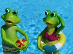 frog-830869_960_720