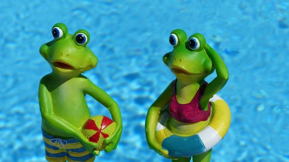 Citation Connaissez-vous l'histoire de la grenouille bondissante?