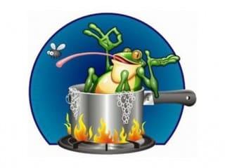 L'histoire de la grenouille
