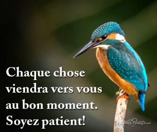 Soyez patient!