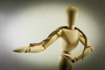 marionette-2319841_960_720