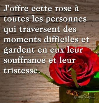J'offre cette rose