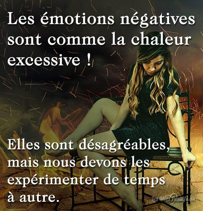 Citation Les émotions négatives sont comme la chaleur excessive !