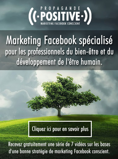 formation marketing Facebook