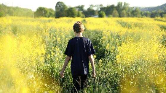5 enseignements du Petit Prince qui vous aideront à être une meilleure personne