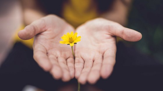 Psychologie du pardon : le détachement de la rancune pour nous permettre d'avancer