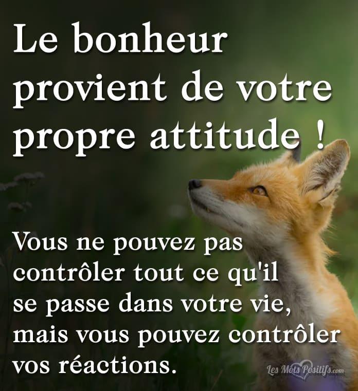 Citation Le bonheur provient de votre propre attitude !