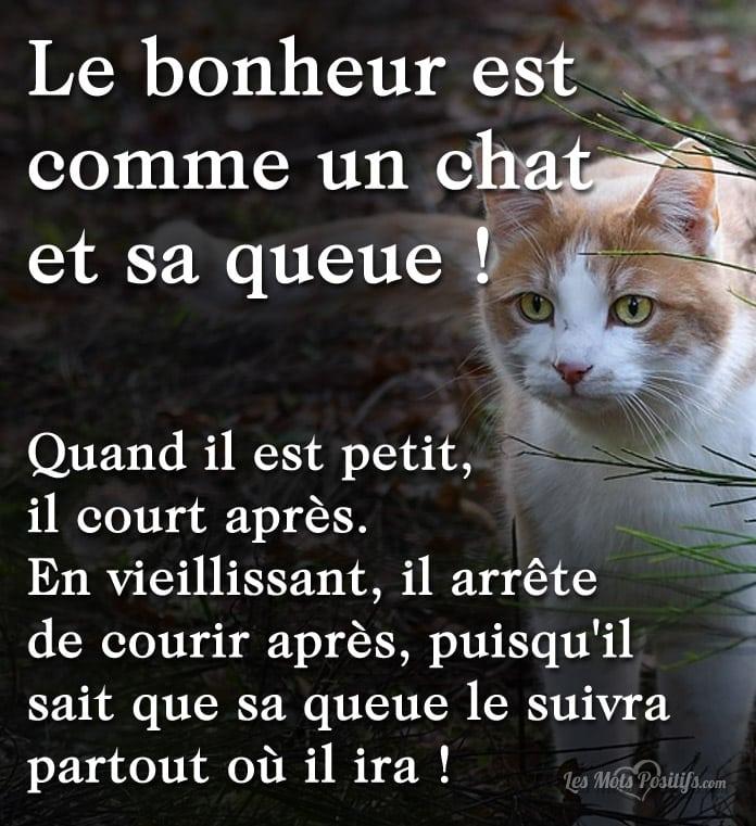 Citation Le bonheur est comme un chat et sa queue !