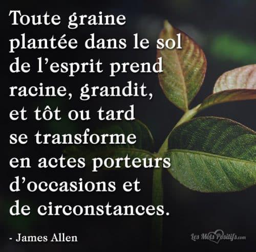 Les graines plantées dans le sol de nos esprits