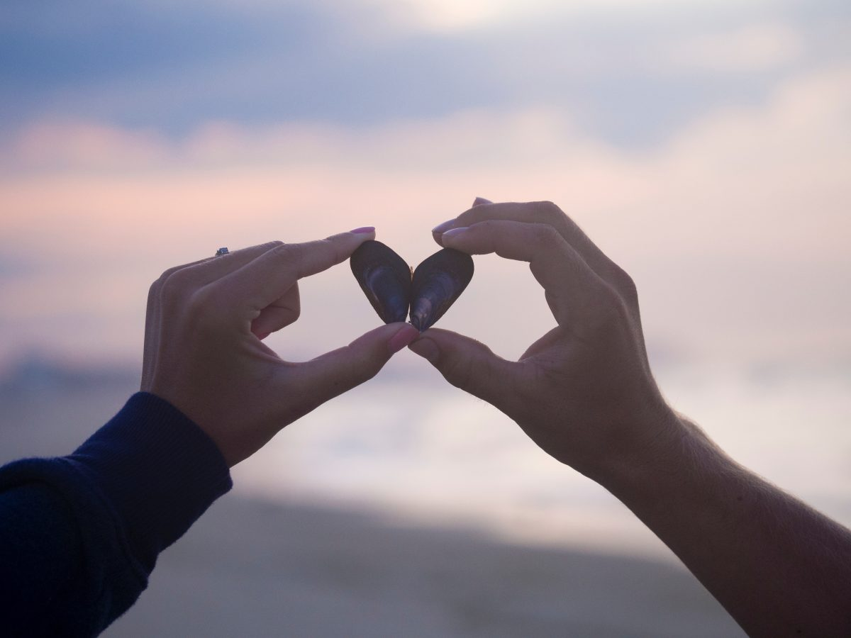 Citation L'amour crépusculaire : ces amours matures qui arrivent au bon moment
