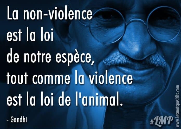 Citation La non-violence selon Gandhi