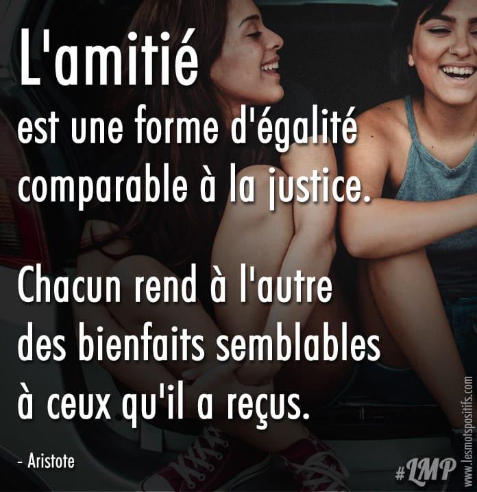 Citation L'amitié est une forme d'égalité comparable à la justice