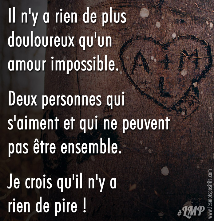 Citation Amour impossible