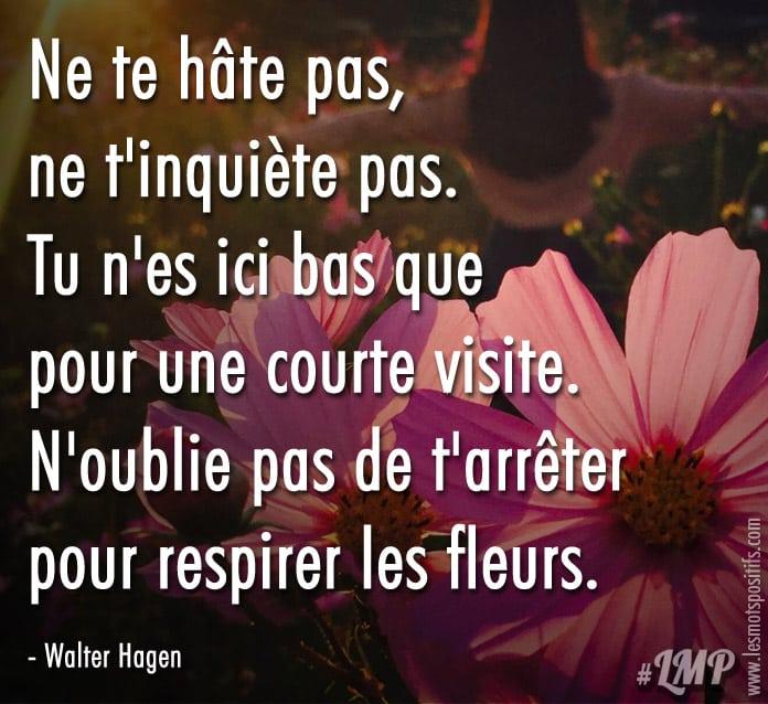 Citation N'oublie pas de t'arrêter pour respirer les fleurs