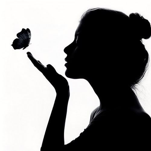 Citation Une histoire de papillon