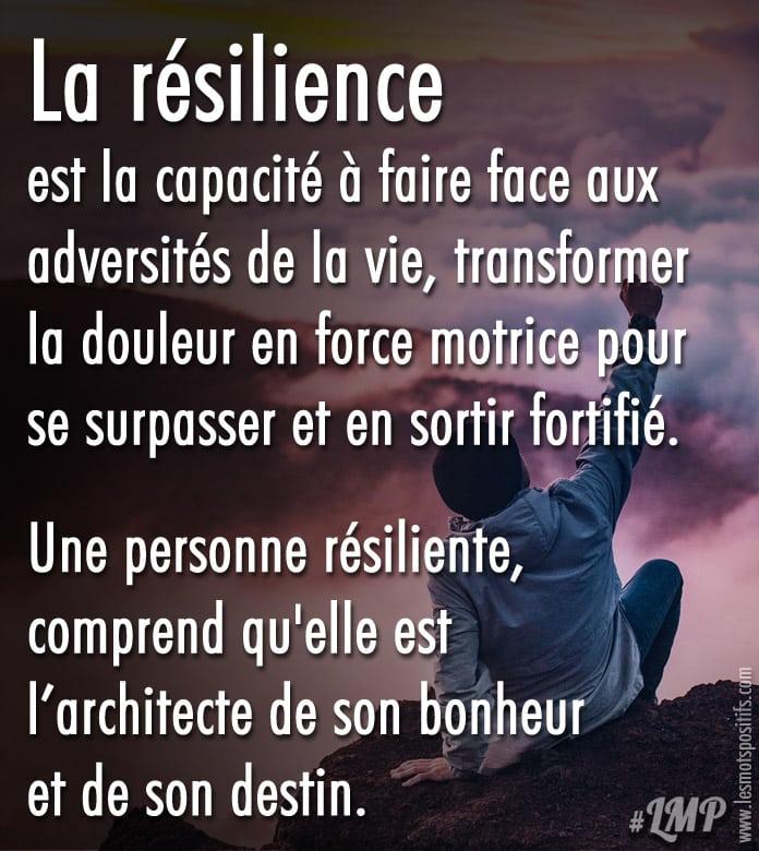 Citation La résilience est la capacité à faire face aux adversités de la vie
