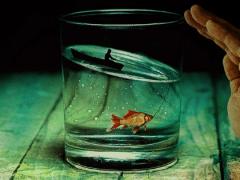technique du verre d'eau