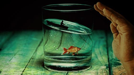 Comment réaliser un souhait grâce à la technique du verre d'eau