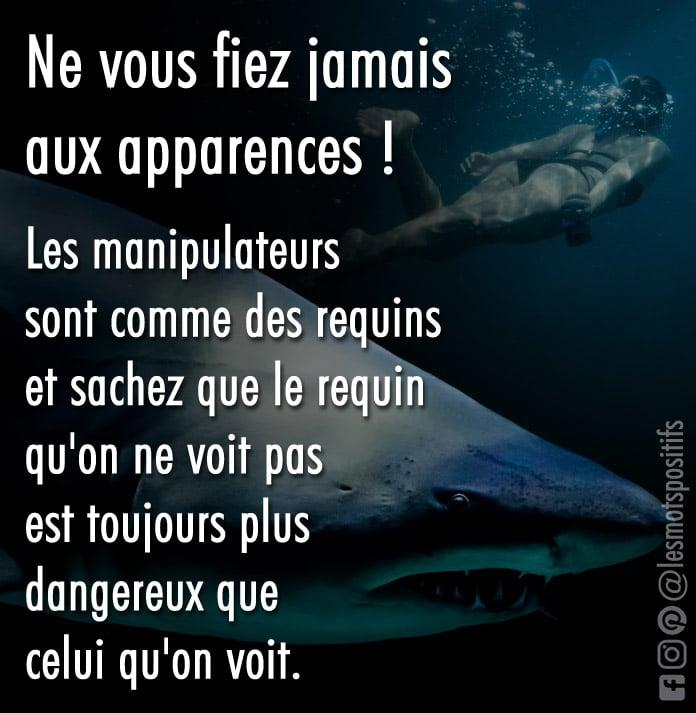 Citation Nager avec les pires requins du monde (Métaphore sur les personnes manipulatrices)