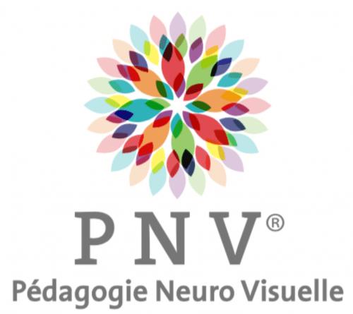 Pedagogie Neuro-Visuelle