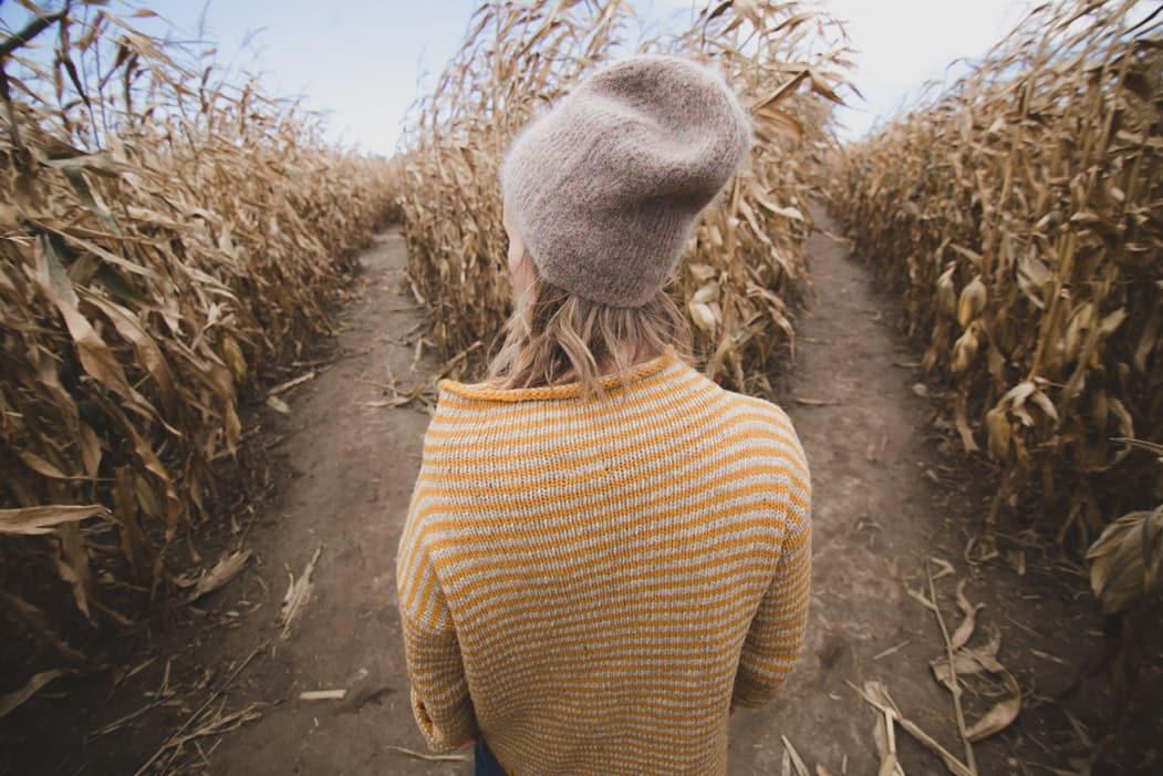 Citation 17 biais cognitifs qui nuisent à la prise d'une bonne décision