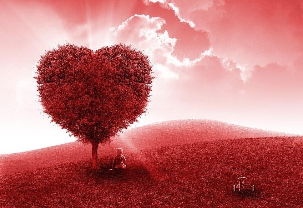 Citation L'humanité vient de faire un arrêt cardiaque… Allons-nous parvenir à la réanimer ?