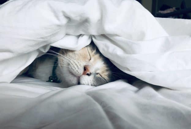7 conseils pour mieux dormir même pendant le confinement