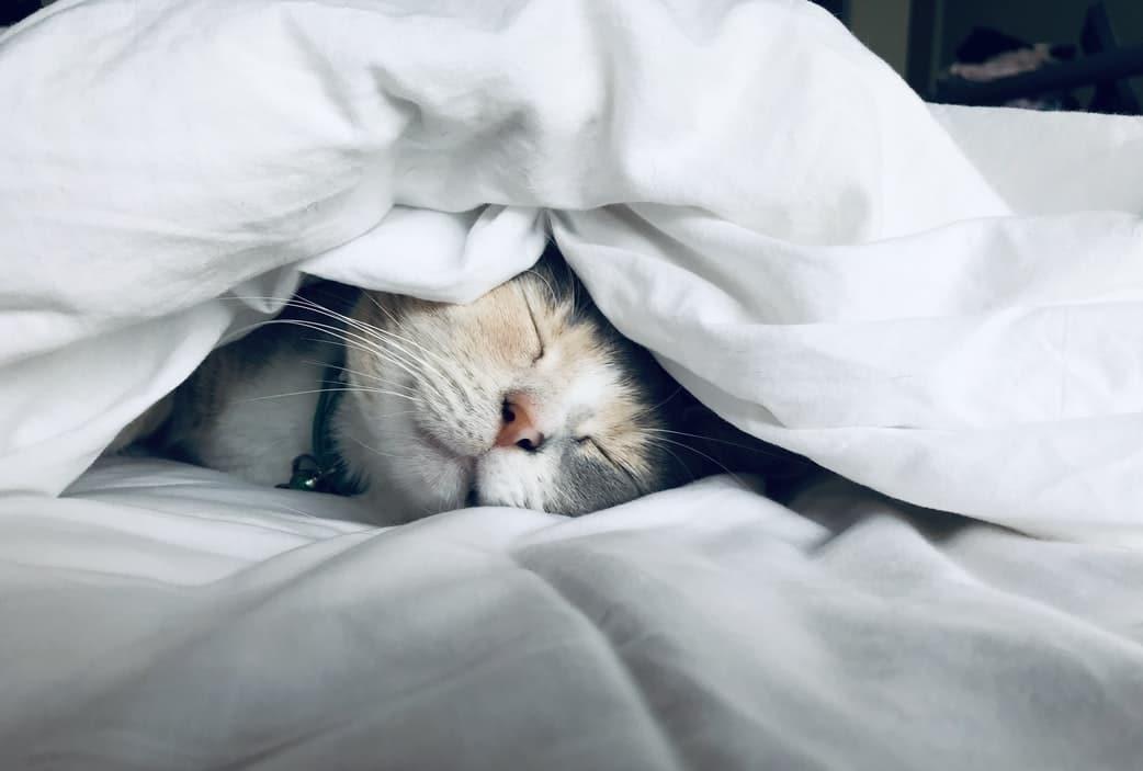 Citation 7 conseils pour mieux dormir même pendant le confinement