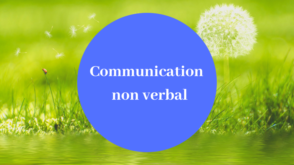 Communication_20non_20verbal