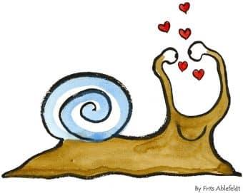 snail-73342_960_720