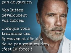 citation-arnold-Schwarzenegger